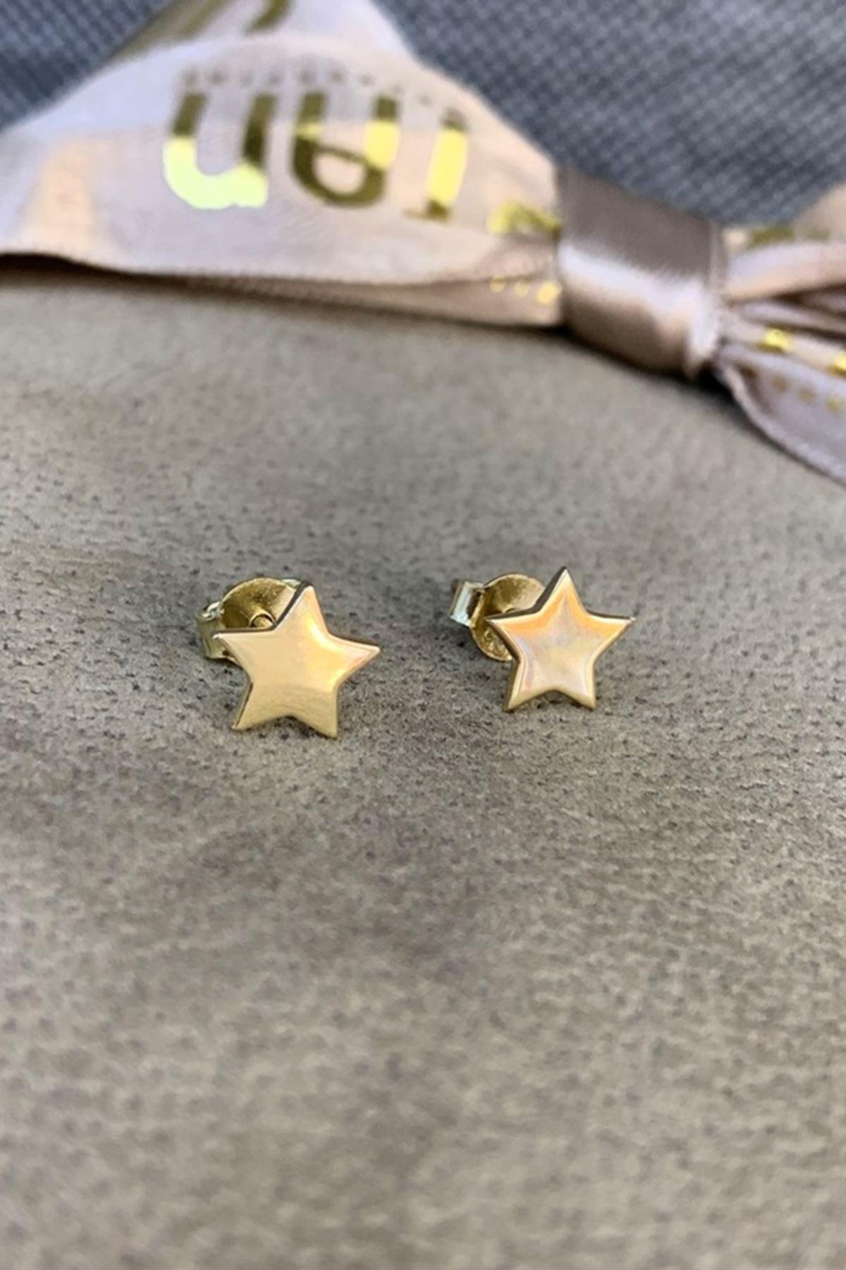 Yıldız Küpe Y00464