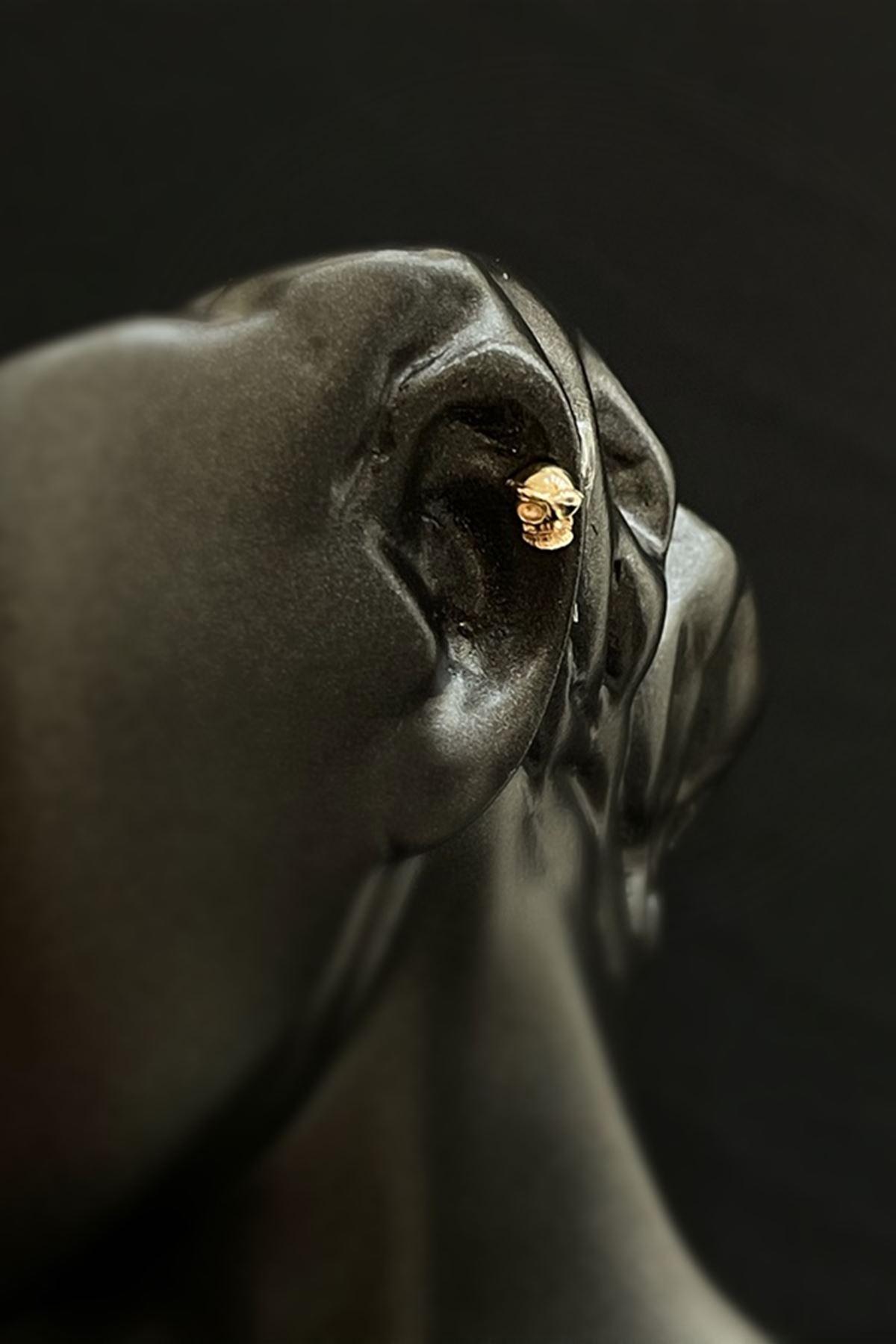 Kuru Kafa Altın  Tragus  TRG0001